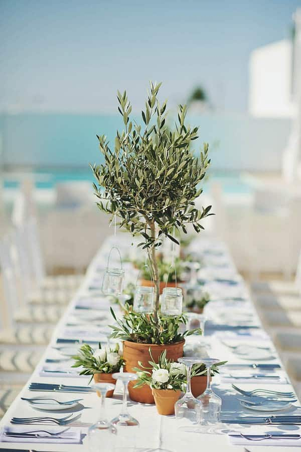 Olive Tree Table Centrepiece Ikea Wedding Hacks